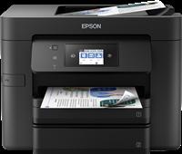 Drukarki Wielofunkcyjne  Epson C11CG01402